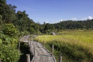 pai cosa vedere, bamboo bridge