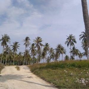Raya island, paesaggio