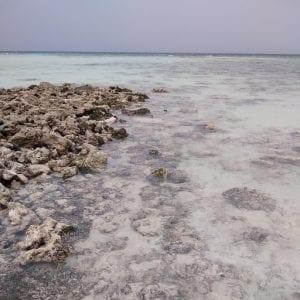 raya island, acque