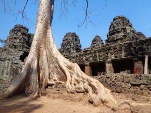Templi di Angkor - banteay kdei