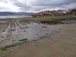 cammino portoghese di santiago da porto